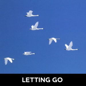 Letting Go - LETTING GO 300x300